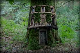 top 10 beautiful tree houses in the world