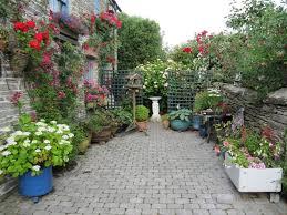 Ideas For A Small Backyard by Plant Privacy Fence Ideas Urban Garden Ideas Garden