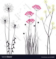 drawing blooming flowers royalty free vector image
