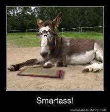 Smartass Memes - smartass meme by twigman56 memedroid