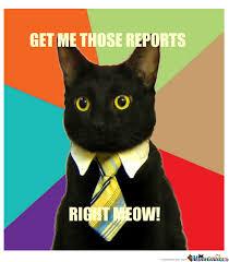 Business Cat Memes - business cat talks business by omg meme center