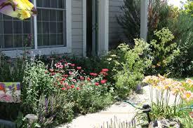 flower bed around trees in front yard landscape ideas flickr photo
