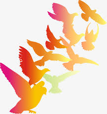 white dove silhouette vector pigeons sketch vector silhouettes