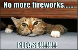 Fireworks Meme - fireworks no meme no best of the funny meme