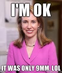 Nonsense Meme - gabrielle giffords on that background check nonsense