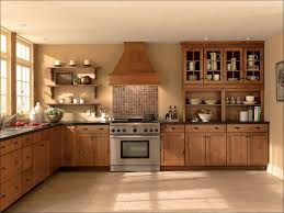 kitchen cabinets liners kitchen holiday kitchen cabinets modern kitchen cabinets 2 color
