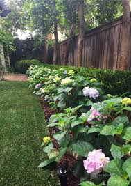 Garden Of Ideas Ridgefield Ct Approved Landscaping With Hydrangeas Best Of Hydrangea Garden
