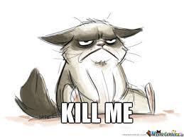 Cartoon Cat Memes - grumpy cat cartoon drawing at getdrawings com free for personal