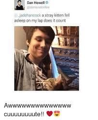 Dan Howell Memes - dan howell e jadehancock a stray kitten fell asleep on my lap does