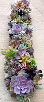 Indoor Plants Arrangement Ideas by 225 Best Flowers U0026 Indoor Plants Images On Pinterest Indoor