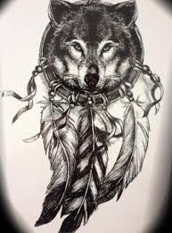 indian wolf temporary indian wolf and hawaiian