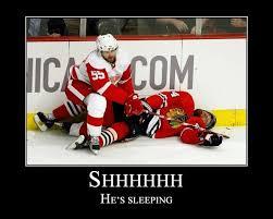 Red Wings Meme - hockey memes red wings annesutu