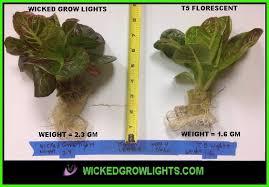 Grow Lights For Indoor Herb Garden - best led grow light spectrum
