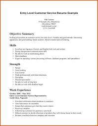 example resume summary resume format download pdf resume