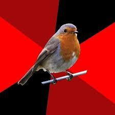 Robin Meme Generator - retail robin meme generator