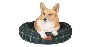 royal collection trust launches line of pet accessories