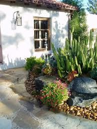 best 25 cactus in spanish ideas on pinterest spanish garden