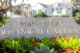 marie selby botanical gardens sarasota fl review youtube