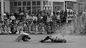 the burning monk 1963