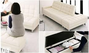 Everyday Sofa Bed Luxury Sofa Bed For Everyday Use Tags Luxury Sofa Bed Living