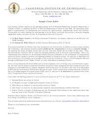 essay samples scholarship applications best free essay writing