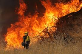 California Wildfire Rocky Fire by Rocky Fire Lake County Kqed News