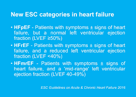 andrew r houghton the esc u0027s new heart failure terminology