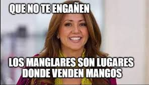 Meme Andrea - 14 memes de la famosa economista andrea legarreta memes