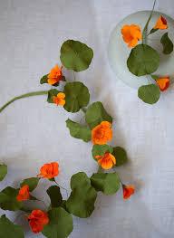 nasturtium flower diy paper flowers nasturtium wreath we are scout