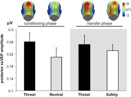 perceiving threat in the face of safety excitation and inhibition