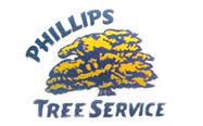 phillips tree service tree removal lyons ga