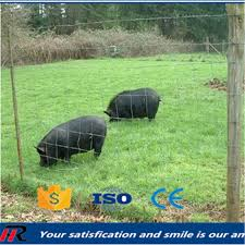 pig fence pig fence suppliers and manufacturers at alibaba com