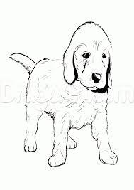 corgi coloring pages free coloring book 7146