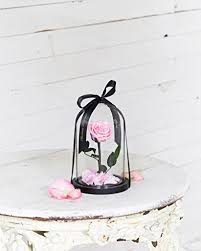 enchanted rose that lasts a year real enchanted rose in a glass dome that will last 1 year inspired