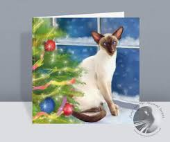 christmas cards the painted cat