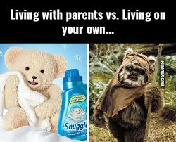 Snuggle Bear Meme - bear archives humoar com your source for moar humor