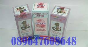 cobra oil super jual cobra oil asli usa minyak cobra oil