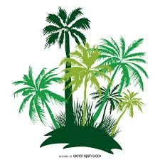 palm tree vector graphics to