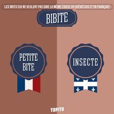 Meme Chose - 10 mots qu礬bec vs france agn礙s s envole