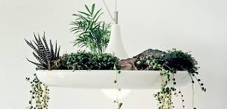 Plant Lights How To Choose by How To Choose The Right Lamp Id Lights
