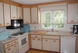Kitchen Doors Cabinets Kitchen Unforeseen Kitchen Doors Cabinets Replacements Eye