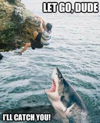 Shark Attack Meme - let s feed fat people to the sharks and the real odds of a shark