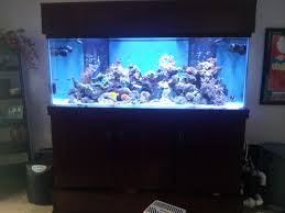 superfish home 40l aquarium fish tank with leds filter black or home decor large size gallon fish tank maintenance jobs office ideas for home