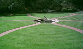 landscape lawn turf