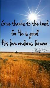 300 best psalms praise thanksgiving images on bible