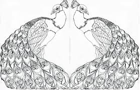 peacock tattoo outline pictures to pin on pinterest tattooskid
