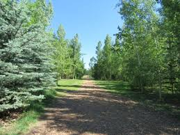 Botanical Gardens Calgary Beautiful Trails To Walk On Picture Of Botanical Gardens Of