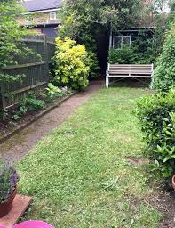 North Facing Backyard Climber For A North Facing Fence Gardening Forum