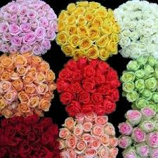 wholesale roses s day flash sale fiftyflowers the