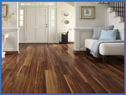 Dustless Hardwood Floor Refinishing Amazing Dustless Hardwood Floor Refinishing Read More On Http